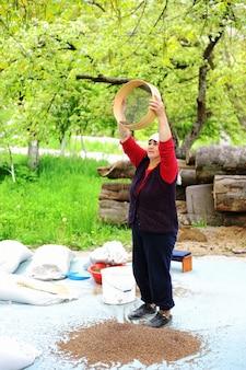 Mulher de meia idade trabalhando com trigo sarraceno Foto Premium
