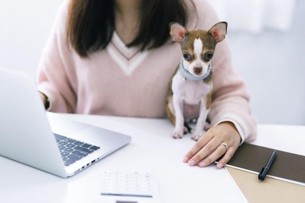 Mulher de negócios trabalhando em casa com um cachorro