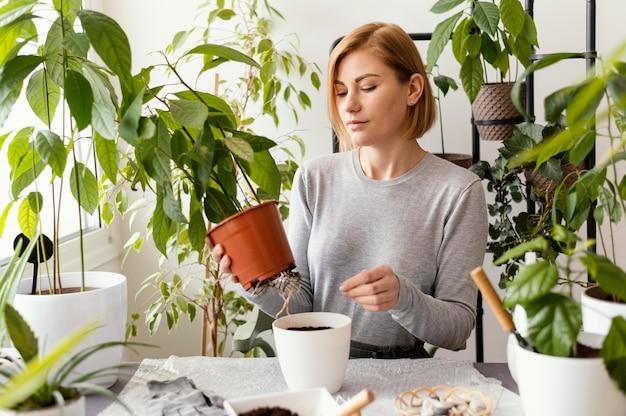 Mulher de tiro médio segurando um vaso de plantas