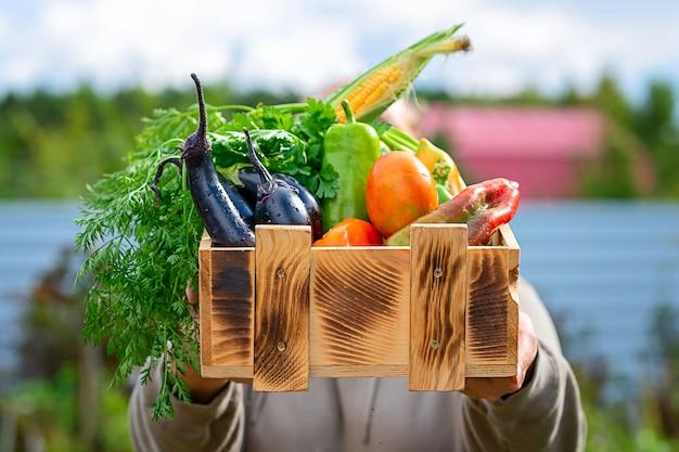 Mulher demonstrando caixa de madeira com vários vegetais conceito de colheita de vegetais