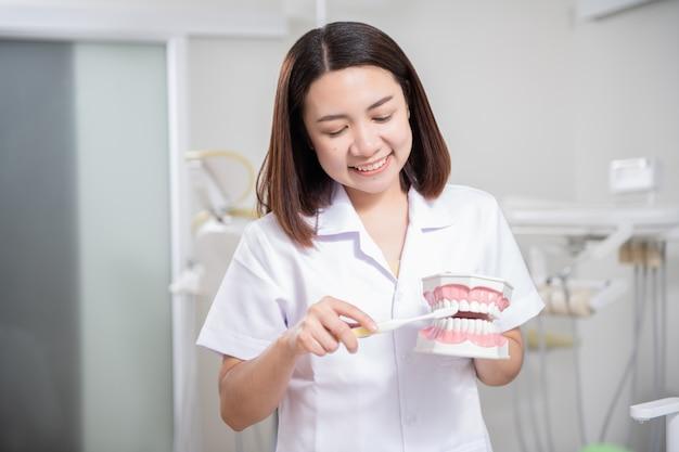 Mulher dentista praticando trabalho no modelo de dente