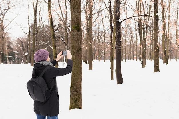 Mulher do turista que captura a imagem no telefone celular na floresta nevado na estação do inverno
