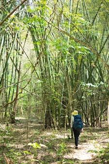 Mulher do viajante com a trouxa que trekking na floresta.