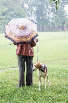 Mulher e cachorro andando em tempo chuvoso