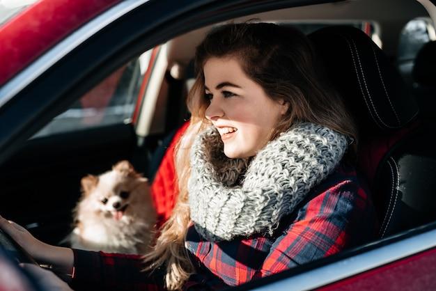 Mulher e cachorro spitz no carro. cachorro engraçado viajando. férias e viagens com o conceito de animal de estimação.