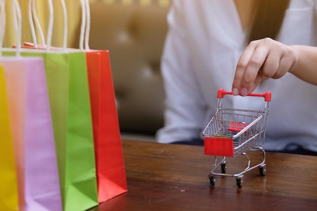 Mulher e carrinho de compras pequeno com o portátil para o conceito em linha da compra do internet.