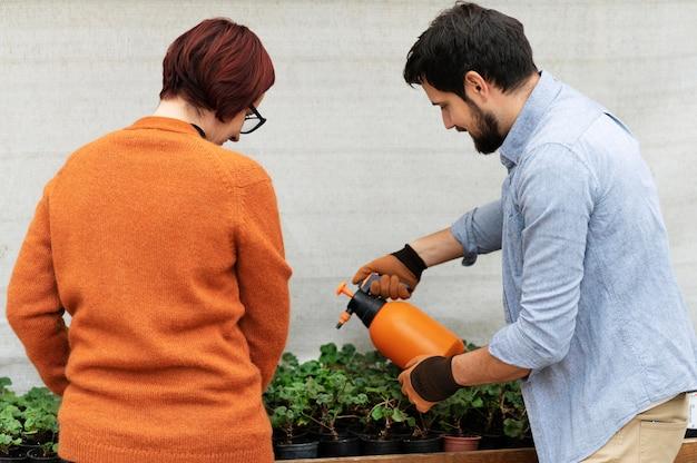 Mulher e homem cultivando plantas