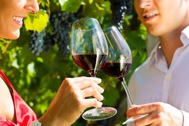 Mulher e homem de pé na vinha e bebendo vinho