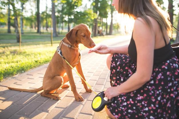 Mulher e um cão jovem em um parque em uma caminhada. mulher alimenta o cachorro com as mãos no beco no parque