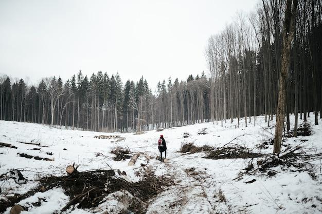 Mulher em pé no meio de uma floresta cortada.