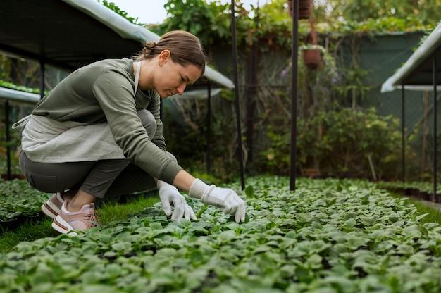 Mulher em plena cena cuidando de plantas