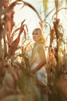 Mulher em um vestido longo de verão branco caminha em um milharal e posando na hora do sol.