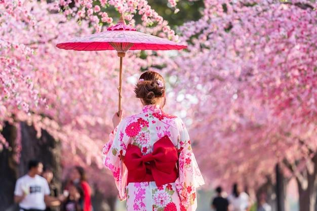 Mulher em yukata (vestido de quimono) segurando guarda-chuva e olhando a flor de sakura ou flor de cerejeira florescendo no jardim
