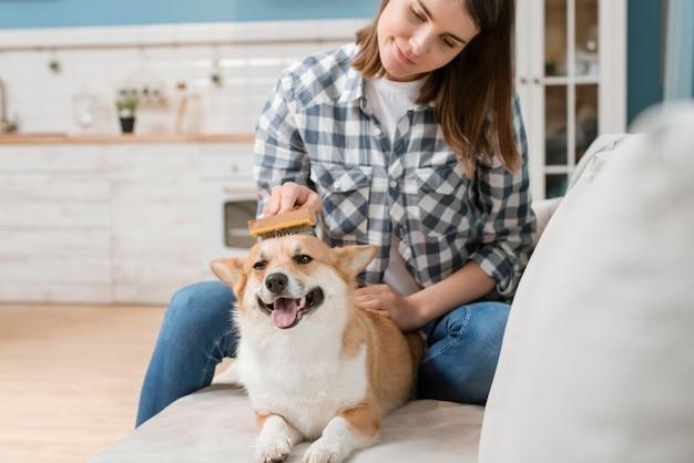 Mulher escovando seu cachorro no sofá