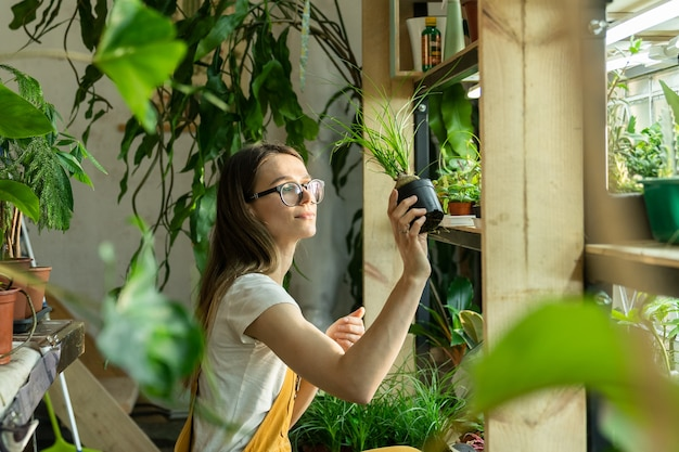 Mulher florista cuidando de plantas domésticas para a horta