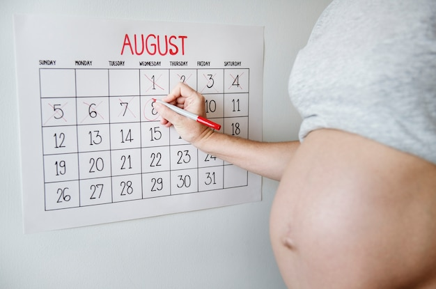 Mulher grávida, contagem regressiva, para, entrega, data