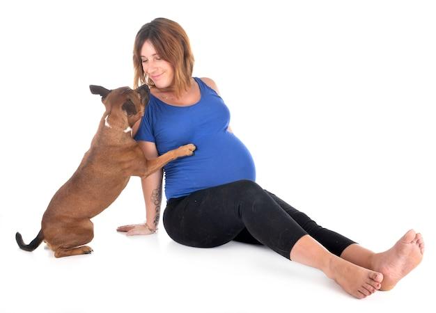 Mulher grávida e cachorro