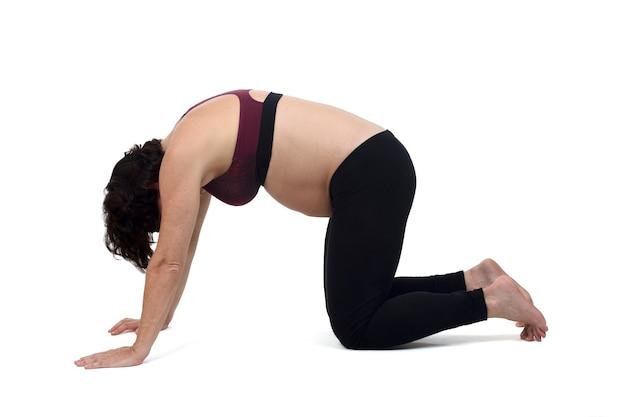 Mulher grávida fazendo exercícios no chão em fundo branco, pose de gato