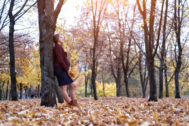 Mulher grávida jovem pensativa em pé perto da árvore. parque de outono ao fundo