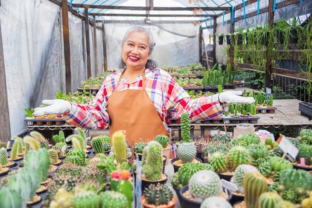 Mulher idosa feliz com uma fazenda de cactos