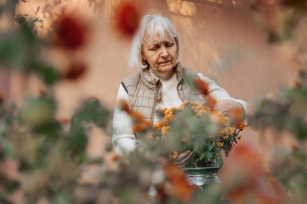 Mulher idosa feliz transplantando flores em vasos no jardim