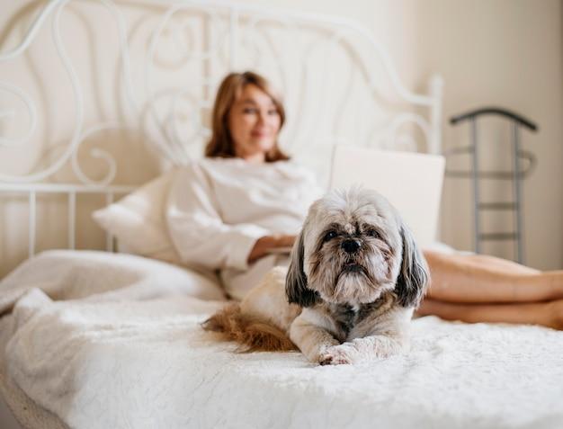 Mulher idosa relaxando com seu cachorro