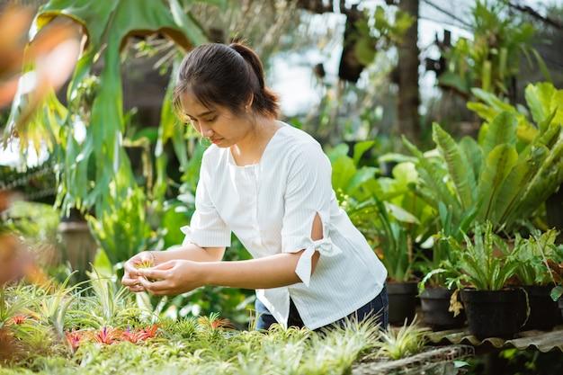 Mulher inspecionando a flor nas plantas