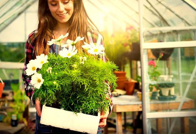 Mulher, jardinagem, em, um, estufa
