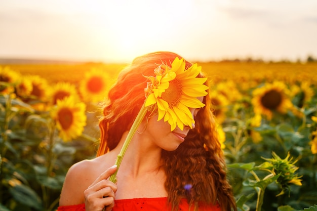 Mulher jovem bonita está segurando girassol na mão em pé no campo ao pôr do sol lindo gentil.