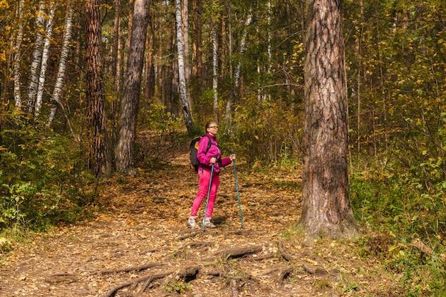 Mulher jovem com bastões para caminhar e uma mochila está envolvida em caminhadas na floresta de outono