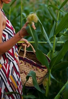 Mulher jovem com um vestido tradicional colhendo a colheita de milho com uma cesta na mão