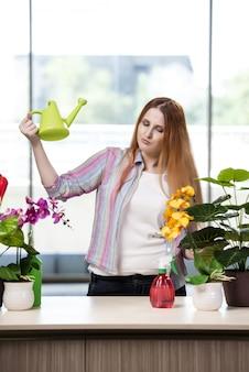 Mulher jovem, cuidando, de, lar, plantas