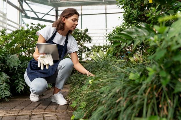 Mulher jovem cuidando de suas plantas em uma estufa