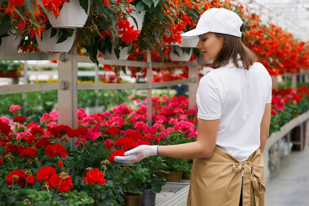Mulher jovem cuidar de belas flores de cores diferentes