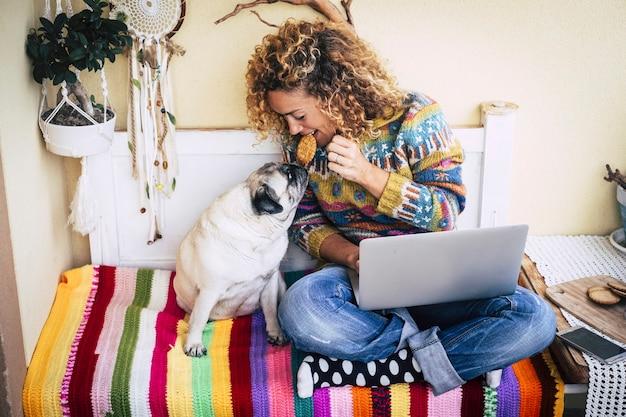 Mulher jovem e bonita alegre compartilha um biscoito com seu cão pug engraçado e adorável enquanto trabalha com o computador laptop em casa em uma capa colorida