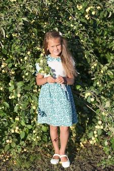 Mulher jovem e bonita colhendo maçãs orgânicas maduras no pomar.