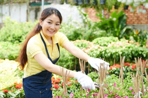 Mulher jovem e bonita com avental jeans e luvas de proteção cortando plantas com podador