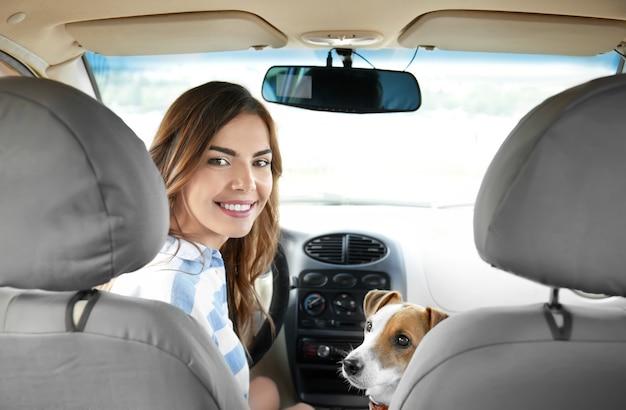 Mulher jovem e bonita com um cachorro fofo no carro