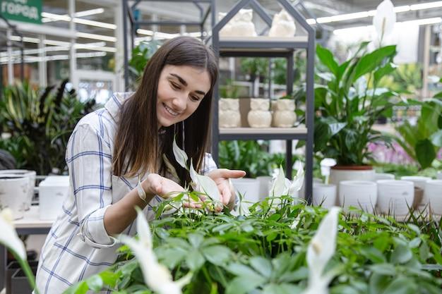 Mulher jovem e bonita em uma loja de flores e escolhendo flores. o conceito de jardinagem e flores.
