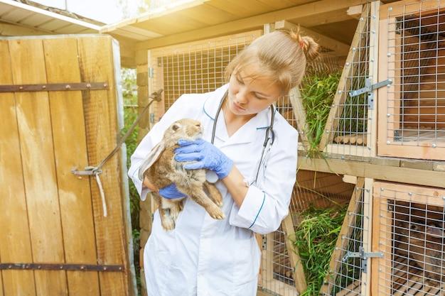 Mulher jovem e feliz veterinária com estetoscópio segurando e examinando o coelho no rancho