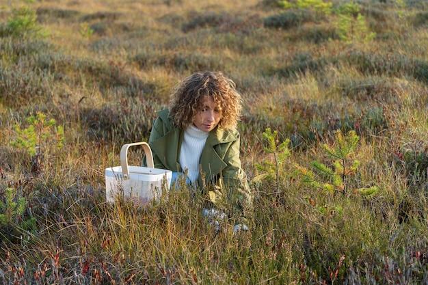 Mulher jovem em uma trincheira da moda colhendo frutas no pântano de outono, segurando uma cesta branca com cranberries