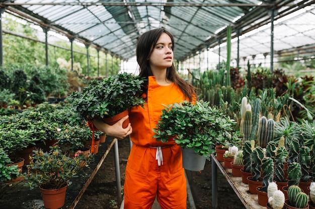 Mulher jovem, em, workwear, segurando, plantas potted