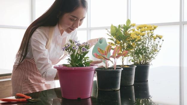Mulher jovem jardineiro derramando água para mudas no quarto.