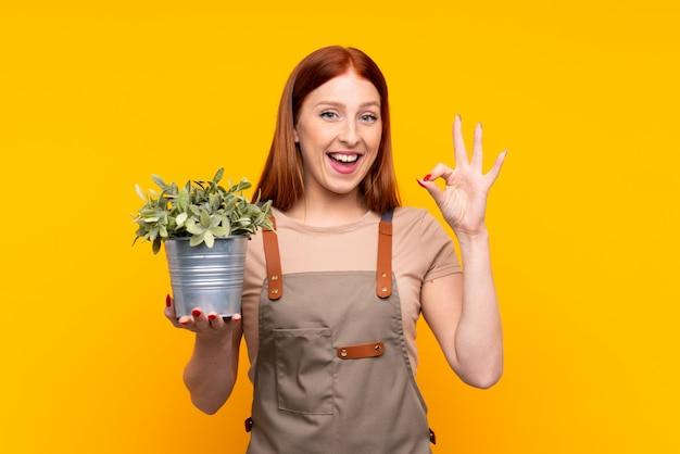 Mulher jovem jardineiro ruiva segurando uma planta mostrando um sinal de ok com os dedos