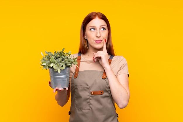 Mulher jovem jardineiro ruiva segurando uma planta sobre amarelo isolado, pensando uma idéia