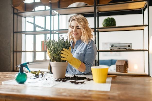 Mulher jovem muda o solo nas plantas caseiras