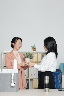 Mulher jovem pedindo a um colega para cuidar de sua planta ao sair do escritório após sair do emprego