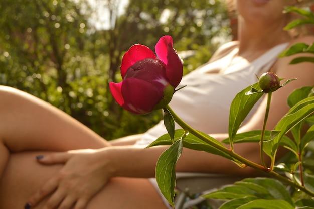 Mulher jovem, relaxante, em, um, poltrona, em, dela, jardim, perto, um, bonito, peônia, flor