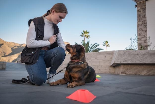 Mulher jovem treina o comportamento do cachorro ao ar livre com jogos e recompensas