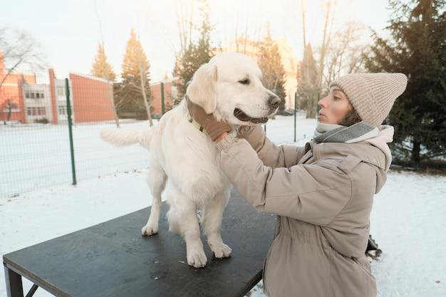 Mulher jovem treinando cão de raça no inverno ao ar livre